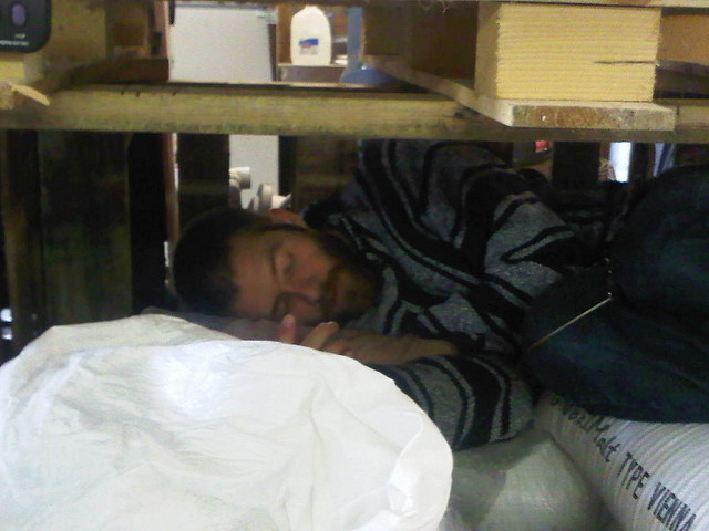 An intern asleep under a table on a pile of 50 pound bags of grain